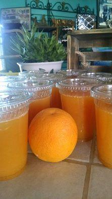 Organic oranges-San Diego: Paradise Produce Market 8175 Del Dios Highway, Rancho Santa Fe, CA. (858) 756-0826