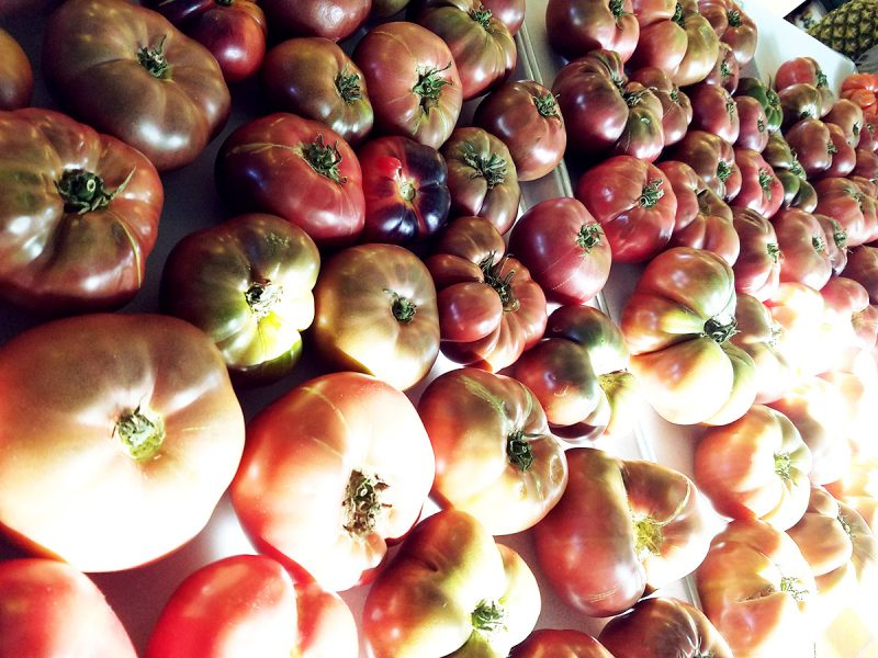 The Best Local Heirloom Tomatoes in San Diego