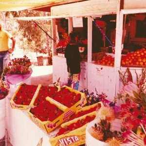 Lemon Twist 1980, Del Dios Highway, Rancho Santa Fe, Produce Stand