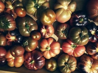 Locally Grown Heirlooms