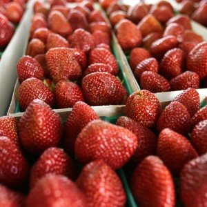 locally grown strawberries, san diego