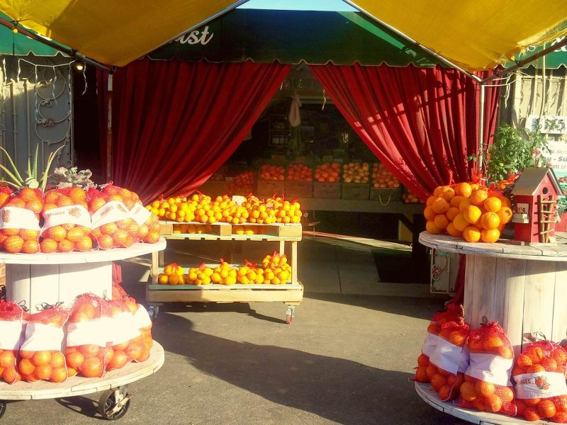 Paradise Produce Market, Outside, Del Dios Highway, Oranges